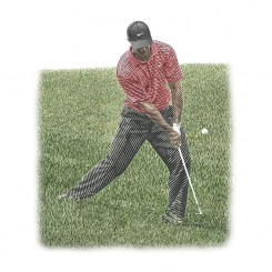 keith-witmer-golf-swing-woods-rough