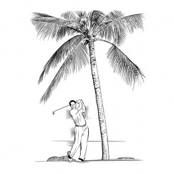 keith-witmer-golf-portraits-darrin-gee-swing